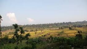 Kavrepalanchok